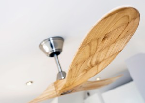 Zephyr ceiling fan devon 19